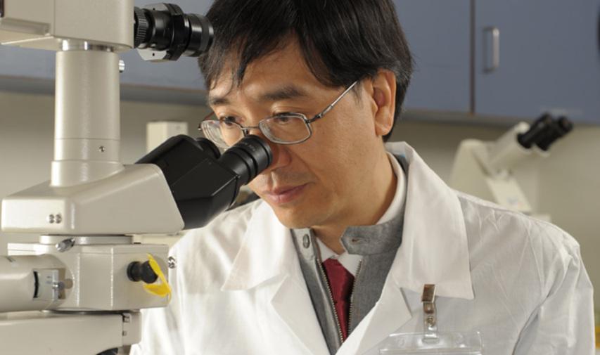 Yuen Kwok Yung